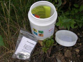 Geocaching: The Perfect RVer's Hobby!